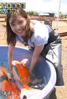 田中瞳アナ(22)のさり気ない胸チラ谷間の放送事故がエロいww【エロ画像】